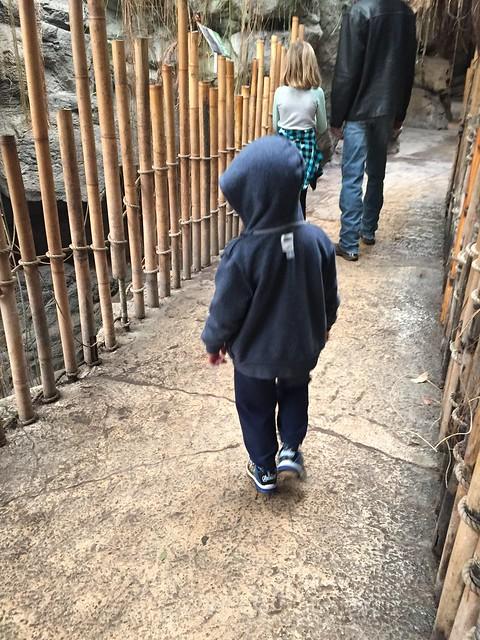 Zoo style