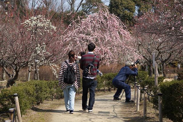 Hirashiba-Park_03
