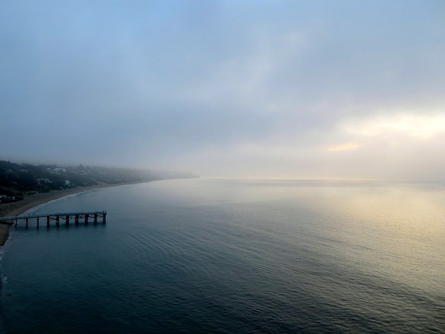 morning fog in the cove