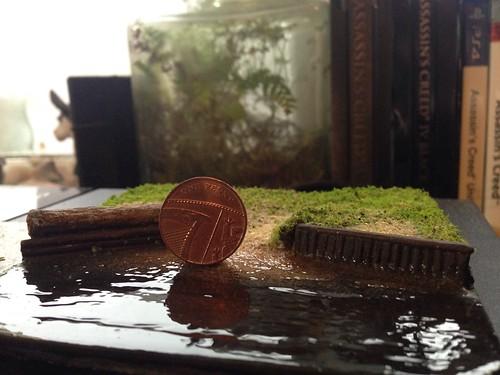 Micro mini XC jump WIP