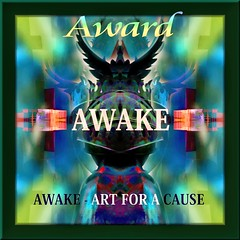 Awake - Art For A Cause Award ;
