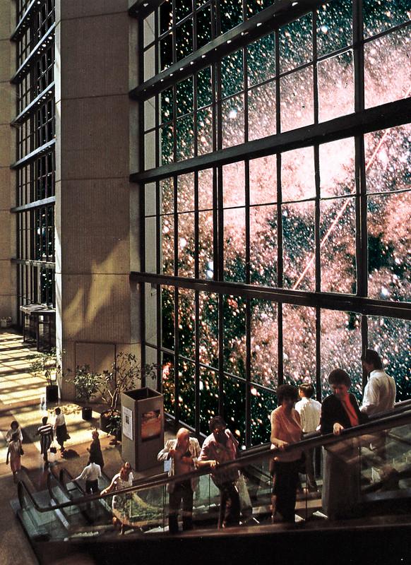 Nebula Mall