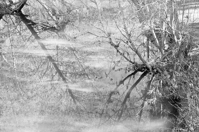 Stark Reflections
