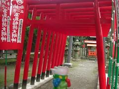 Roserade In Ichinomiya, Aichi 17 (Masumida shrine)