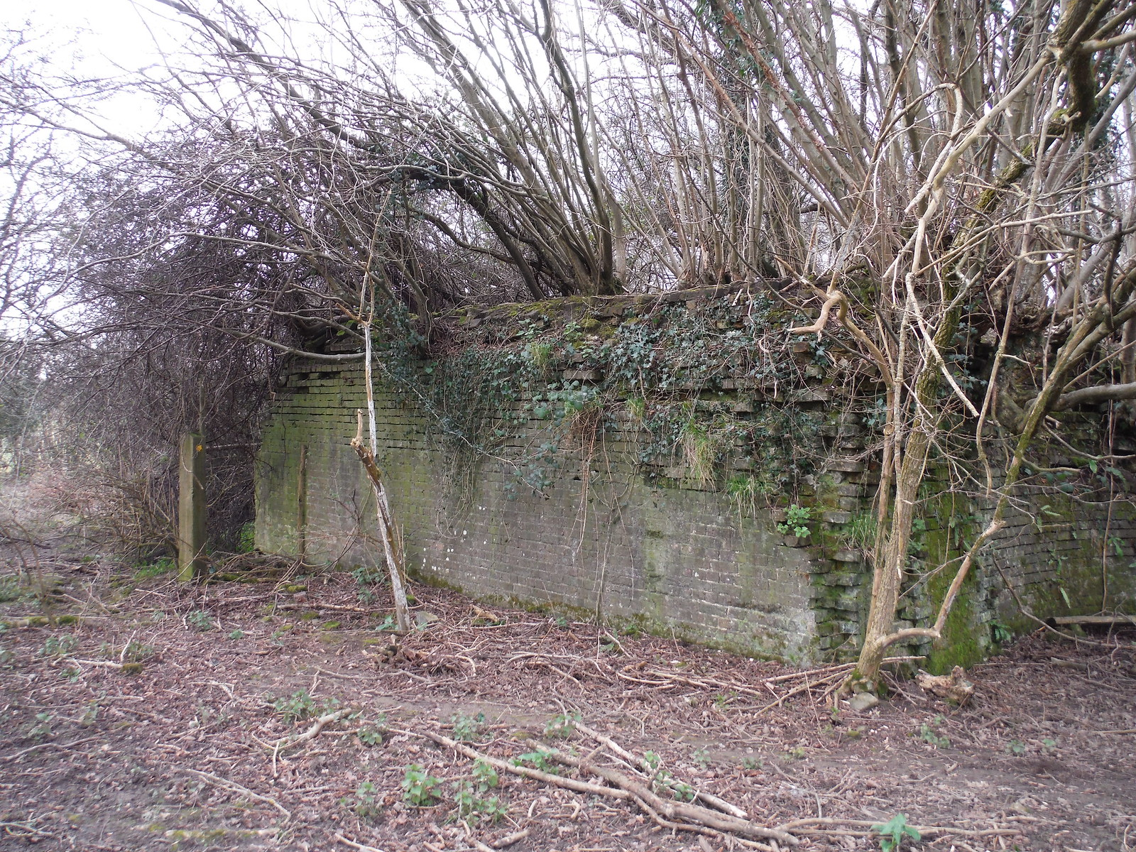 Buttressed bridge remnants of the - never finished - Ouse Valley Railway SWC Walk 262 Uckfield to Buxted