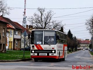 enykk_dud649_03