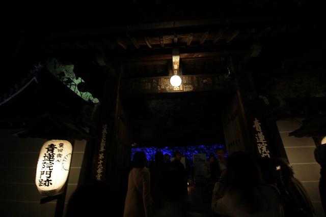 20141122-武奈ヶ岳&京都ライトアップ-0563.jpg