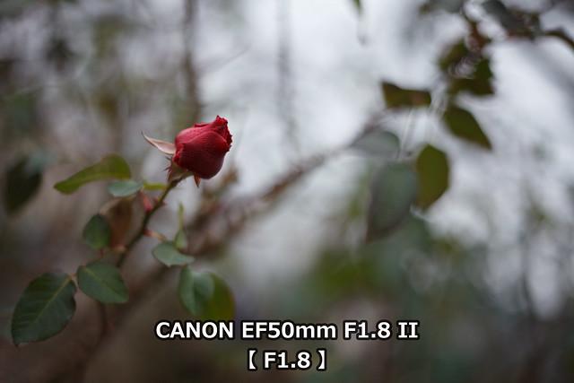 20160415_37_TEST3_EF50F18_F18