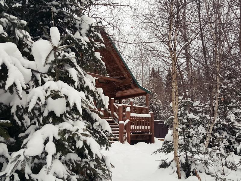 Au Chalet en Bois Rond cabin