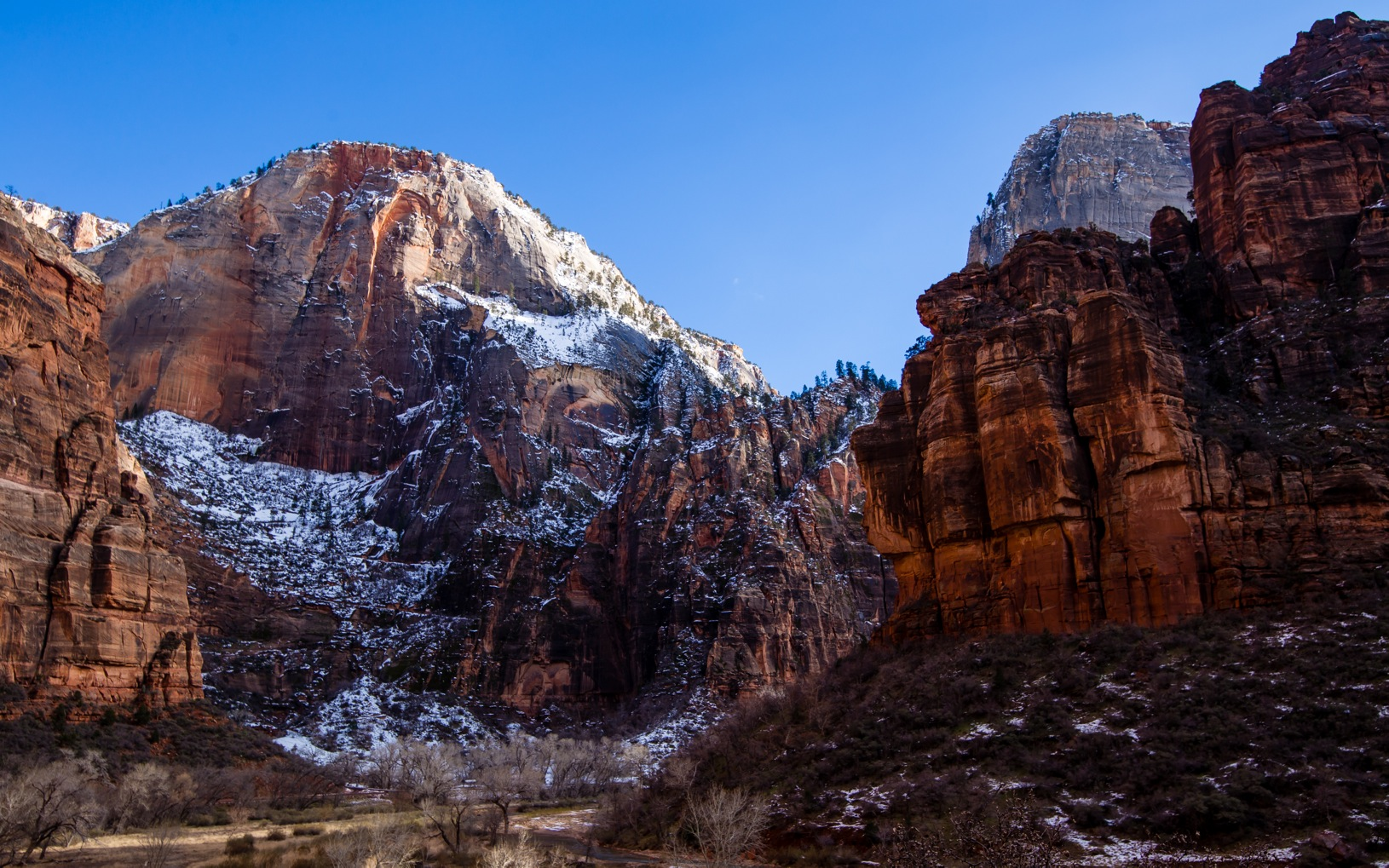 Zion National Park-9369