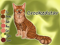 Crookedstar of RiverClan3