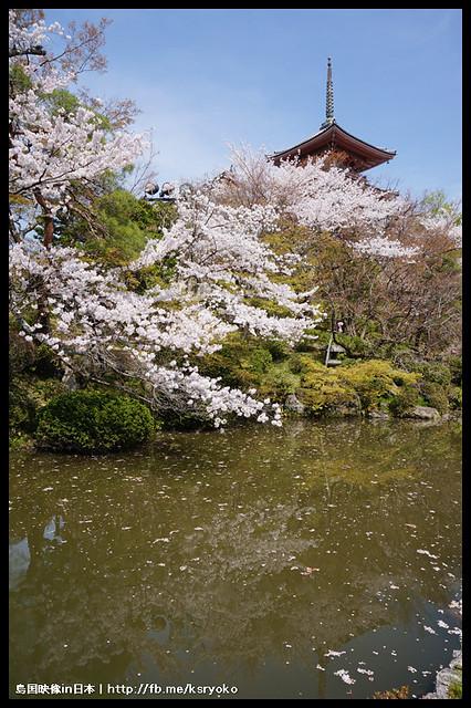 日本京都_清水寺 櫻.59