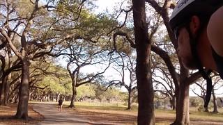 TY park