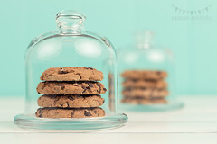 Chocolate chip cookies under cloches