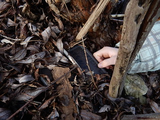 Riverside Cache - the cache as we found it