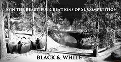 Last chance to join the Black & White ( SL competition) , open till 1 feb!