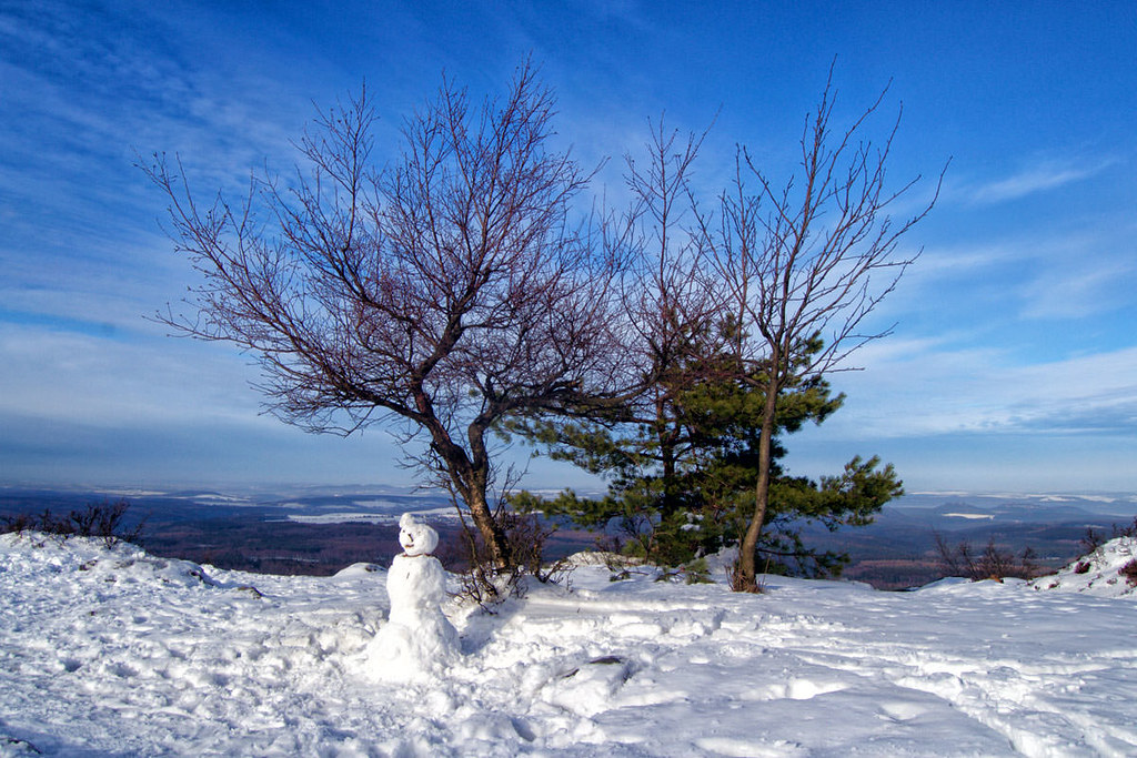 Auf dem Hohen Schneeberg