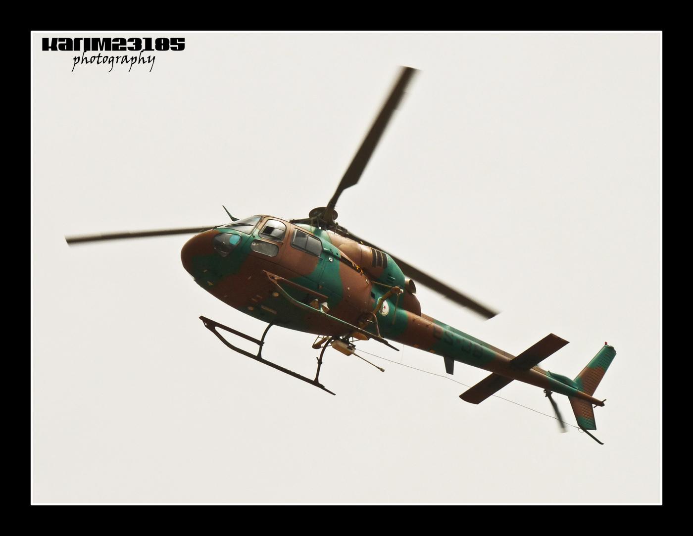 صور مروحيات القوات الجوية الجزائرية Ecureuil/Fennec ] AS-355N2 / AS-555N ] - صفحة 2 25493012533_a9e610397d_o