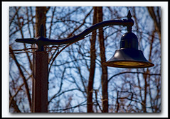 Park Light (III)
