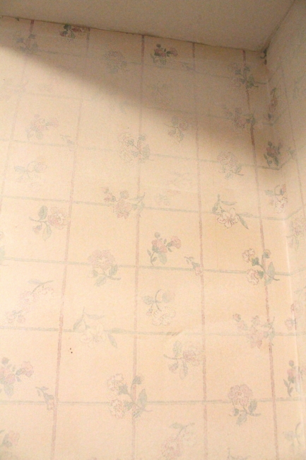 2nd layer of wallpaper