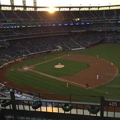 Let's Go Mets! #mets #baseball:baseball: