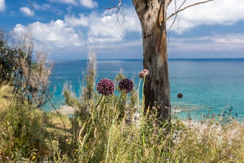 Küste Kalabrien