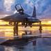 Northrop F-5N Tiger by Steve Matterface