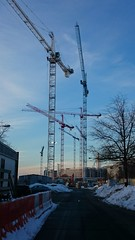 Cranes at the Wharf, Jan 25, starting to emerge from the underground