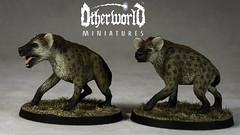Feb 1 Hyenadons