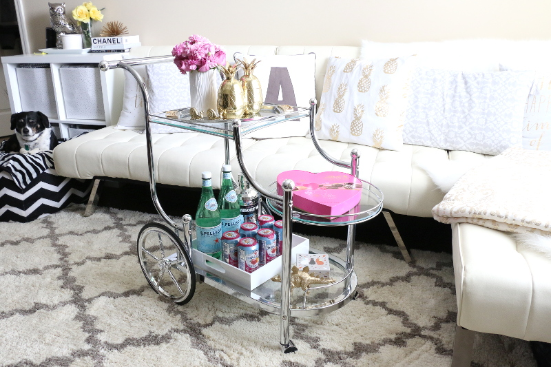 how-to-style-a-bar-cart-dog-6