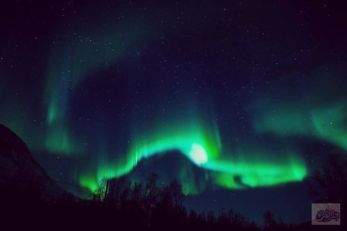 I started off my tryst with the famous Lapland in search of fulfilling one more childhood quest, to witness the 'Aurora borealis', the lights of the northern hemisphere, means 'dawn of the north'. On the other note, 'Aurora australis' means 'dawn of the s