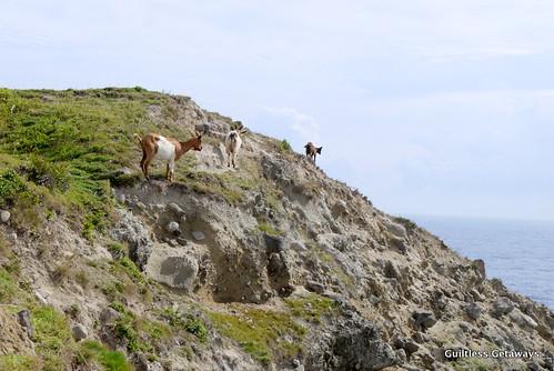 Chamantad-Tinyan-Viewpoint-batanes.jpg