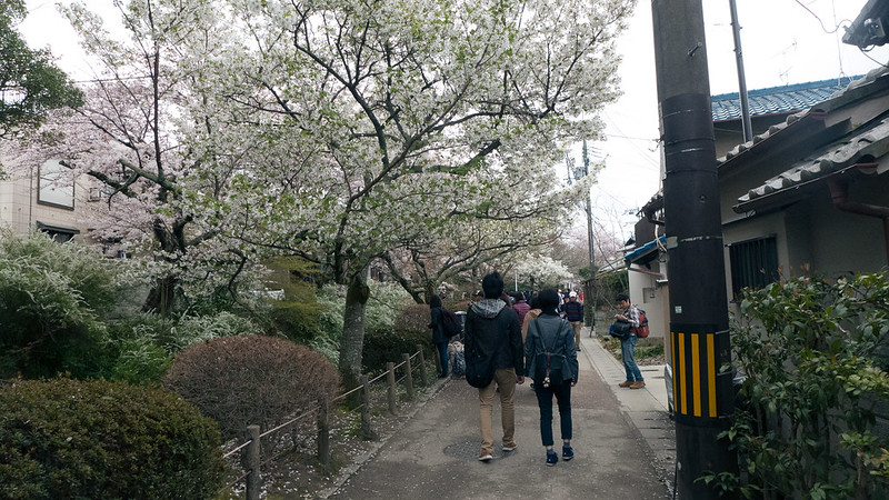 osaka-kyoto-nara-139