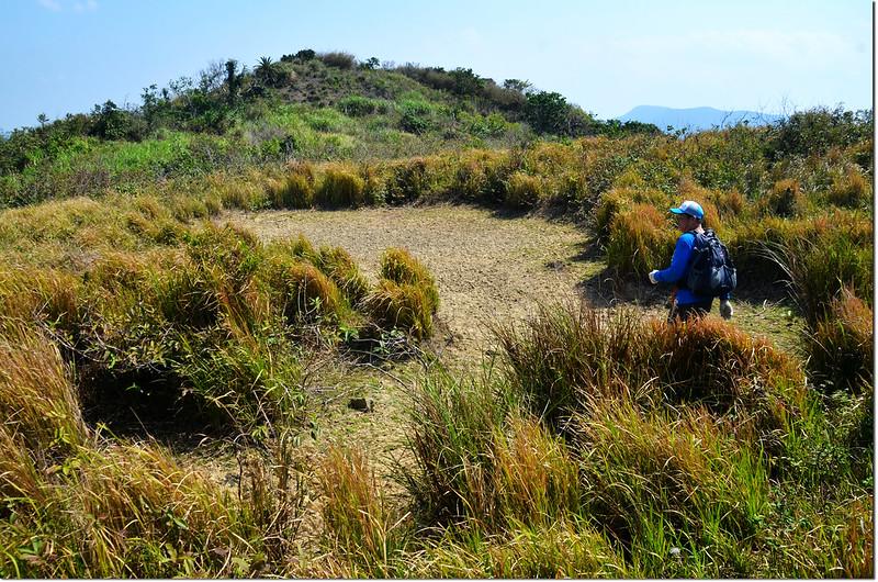 門馬羅山頂稜線看天池