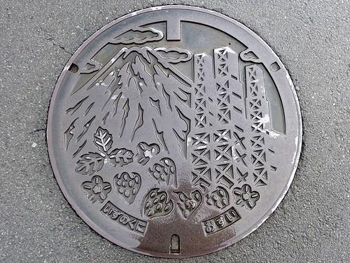 Izunokuni Shizuoka, manhole cover (静岡県伊豆の国市のマンホール)