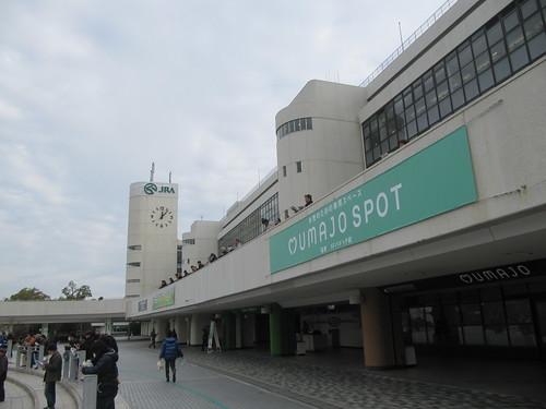 京都競馬場のUMAJOスポット