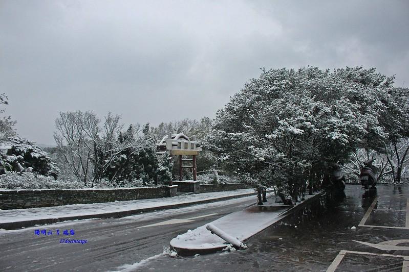 2016-台北陽明山-瑞雪-難得一見的雪白山景-17度C隨拍 (37)
