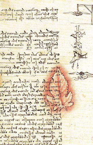 鳥の飛翔に関する手稿