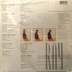 RAY PARKER JR.:I LOVE YOU LIKE YOU ARE(JACKET B)