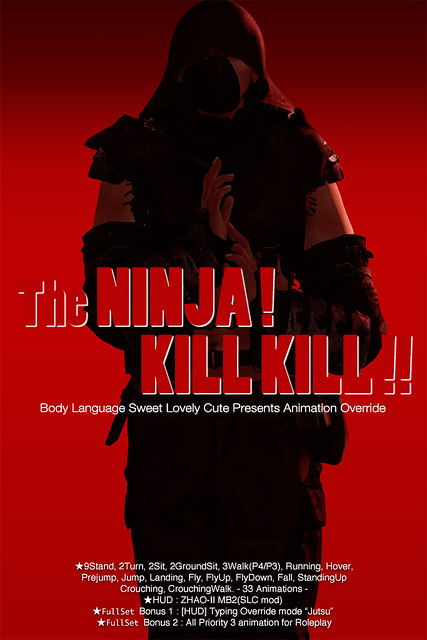 AO // The NINJA! KILL KILL!! @ Fantasy Faire 2016