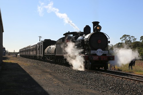 2016-03-19_0941-07-470 3237 on 8S01 at Wyalong