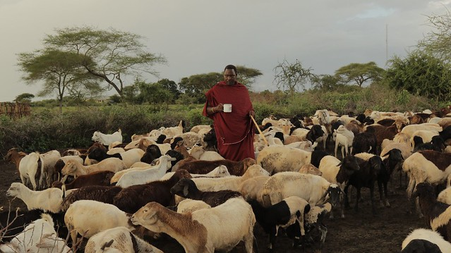 photo of Goldman Environmental Prize Winner