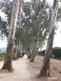 CircleG 遊記 元朗 南生圍 散步 生態遊 一天遊 香港 (90)