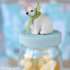 DIY polar bear jar