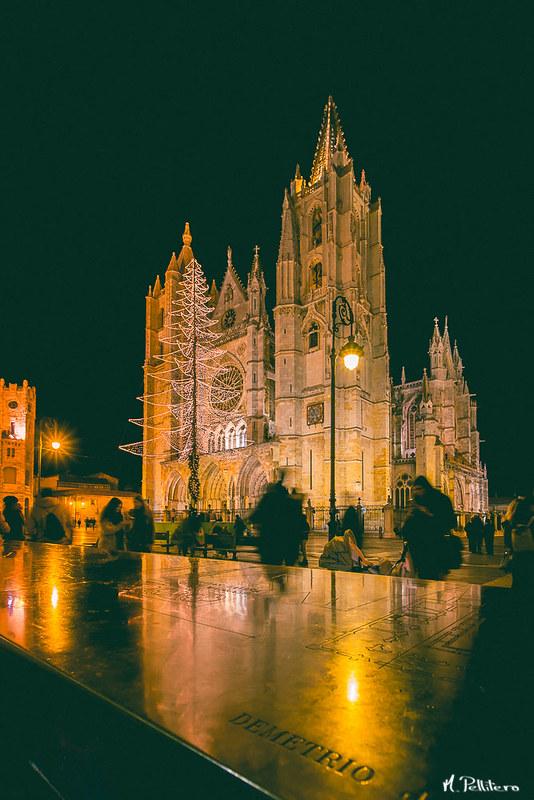 Catedral de León - Reflejos