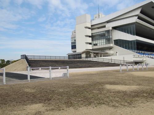 京都競馬場芝生の丘