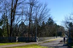 20th Avenue NE Bridge at Ravenna Park (5 of 12)
