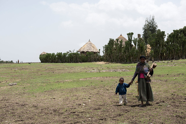 Moges' and his family, assisted by a UNICEF-support child health program in Romey Kebele, Deneba Woreda, Ethiopia.