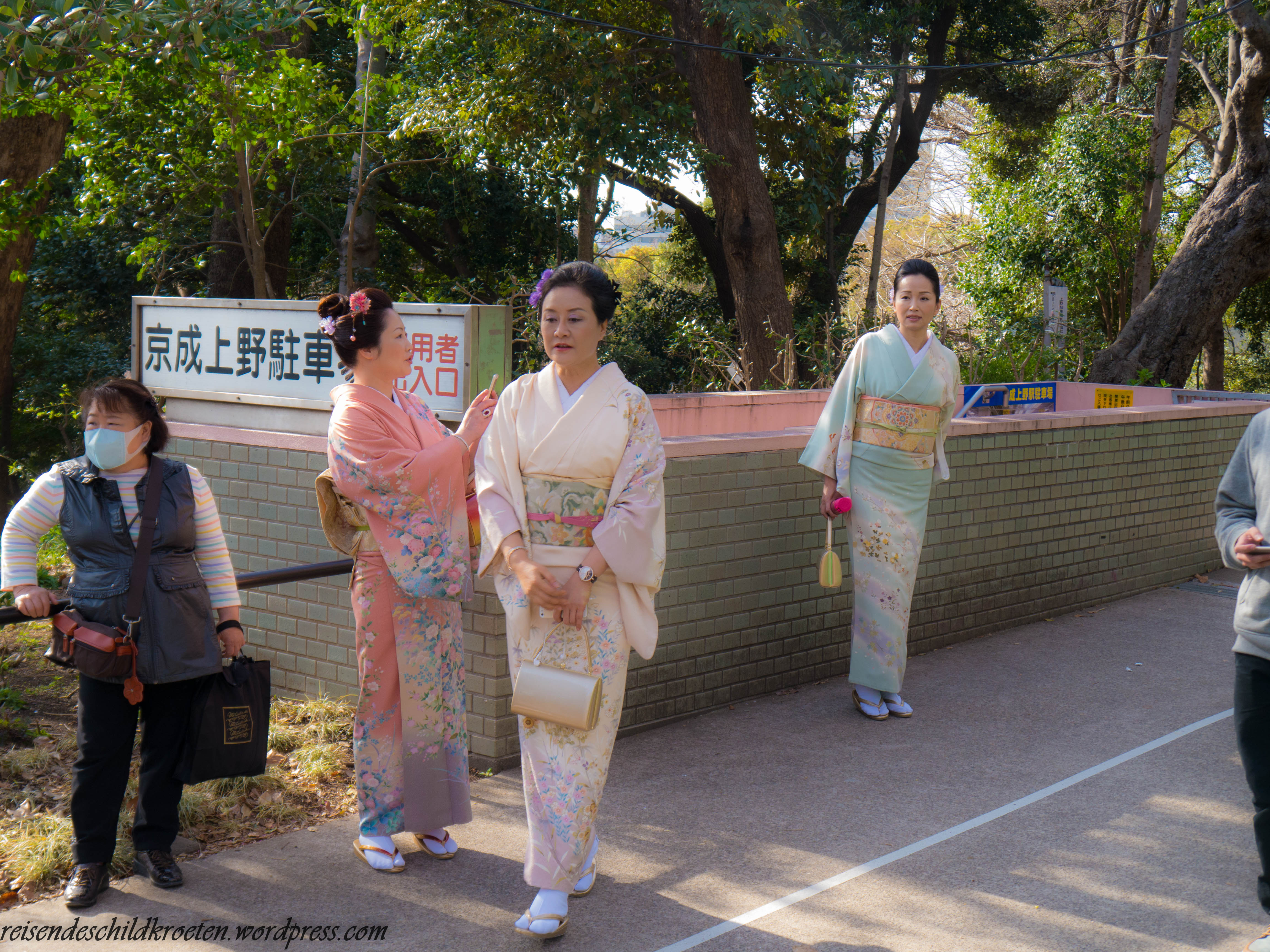 Traditional Dresses in Ueno