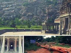 Venkatramana Temple, National Fossil Wood Park
